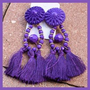 Jewelry - *** BOHO Purple Tassel Earrings